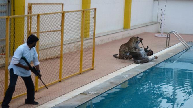 Leopardo Entra in Scuola Indiana