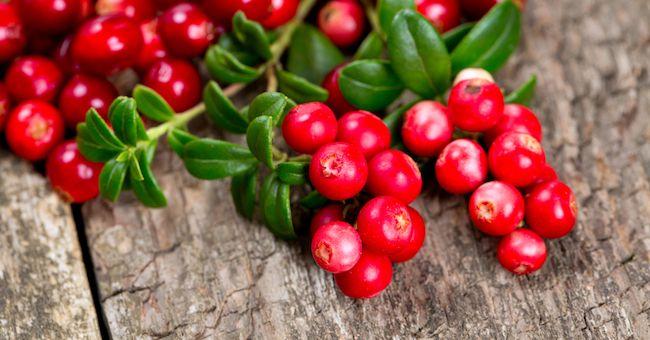 Dieta Smart Food: Volume su Cibi 'Intelligenti'