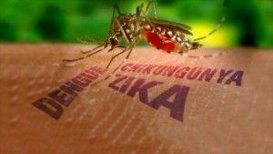 virus-zika-italia-1