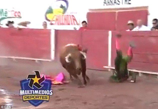 Messico, torero Rodriguez incornato